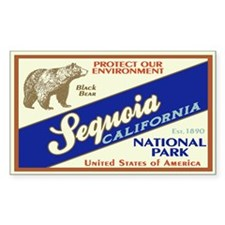 Sequoia (Black Bear) Rectangle Decal
