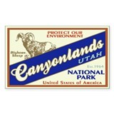 Canyonlands (Bighorn) Rectangle Decal