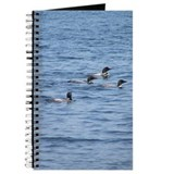 Panther Pond Loons Journal
