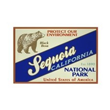 Sequoia (Black Bear) Rectangle Magnet
