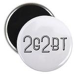 2GTBT Magnet