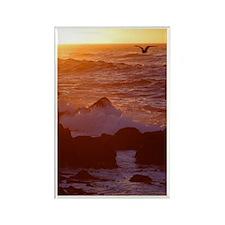 Sunset in Flight Rectangle Magnet (10 pack)