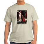 Accolade / Lab (y) Light T-Shirt