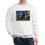 Starry Chocolate Lab Sweatshirt