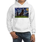 Starry Chocolate Lab Hooded Sweatshirt