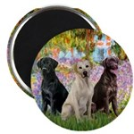 Monet's Garden & Lab Trio Magnet