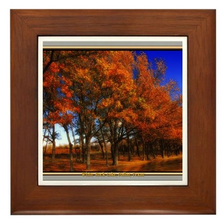White Rock Lake Framed Tile