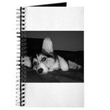 Tri Pembroke Corgi. . .Reflec Journal