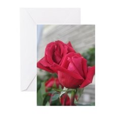 A001-RED ROSE Greeting Cards (Pk of 10)