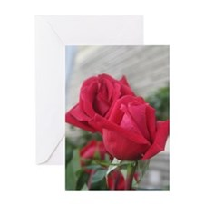 A001-RED ROSE Greeting Card