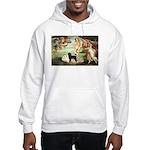 Venus * /PWD Hooded Sweatshirt