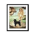 Venus / PWD (#2) Framed Panel Print