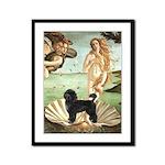 Venus / PWD (#2) Framed Panel Print