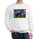 Starry Night / Schnauzer Sweatshirt