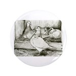 Texan Pioneer Pigeons 3.5