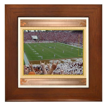 Cotton Bowl #1 Framed Tile