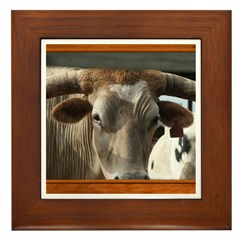 Longhorn #6 Framed Tile