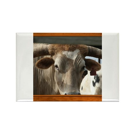 Longhorn #6 Rectangle Magnet