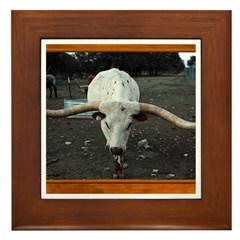 Longhorn #3 Framed Tile