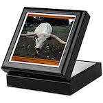 Longhorn #3 Keepsake Box