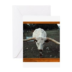 Longhorn #3 Greeting Card