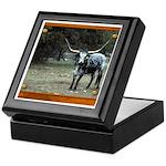 Longhorn #2 Keepsake Box