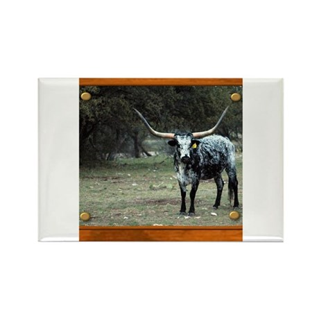 Longhorn #2 Rectangle Magnet
