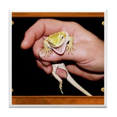 Horned Toad Tile Coaster