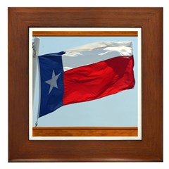 State Flag #3 Framed Tile