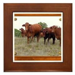 Cattle Framed Tile