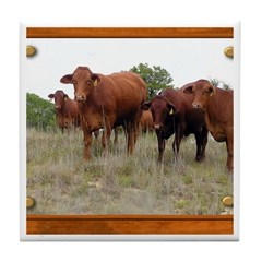Cattle Tile Coaster