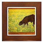 Calf Framed Tile