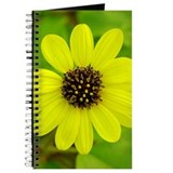 Daisy Photo Journal