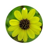 Daisy Photo Keepsake (Round)