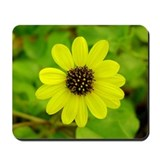 Daisy Photo Mousepad