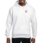 Anti-McCain: Just say no Hooded Sweatshirt