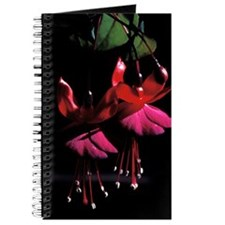 Journal - fuchsia blossoms 1992