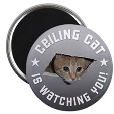 Ceiling Cat is Watching YOU! Magnets (10 pack)