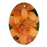 Orange Lilly Oval Ornament