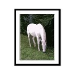 Save America's Horses Framed Panel Print