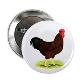 "Rhode Island Red Rooster 2.25"" Button"