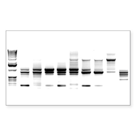 DNA Gel B/W Rectangle Sticker