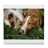 Tile Coaster (Toller and Aussie)