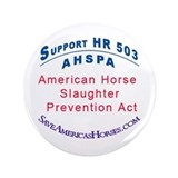 "AHSPA 3.5"" Button (100 pack)"