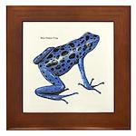 Blue Poison Frog Framed Tile