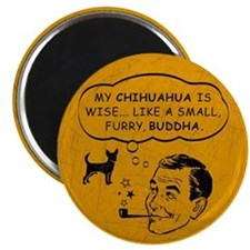 "My Chihuahua is Wise... 2.25"" Magnet (10 pack)"