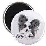 "Papillon Headstudy2 2.25"" Magnet (10 pack)"