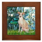 Lilies / Ital Greyhound Framed Tile