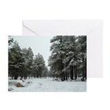 Winter in Arizona Greeting Cards (Pk of 20)