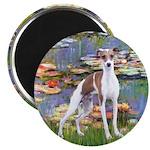 Lilies2/Italian Greyhound 2.25